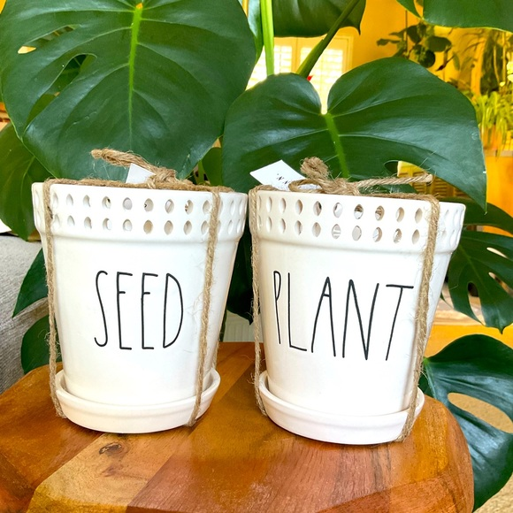 Set of Rae Dunn SEED and PLANT Ceramic Planters